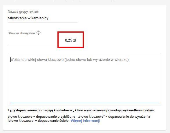 pierwsza kampania w Google Ads - domyślna stawka za kliknięcie