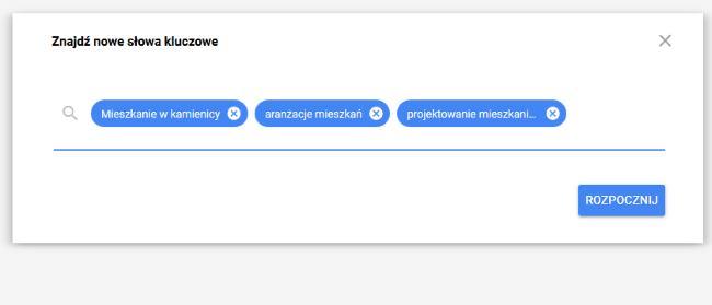 pierwsza kampania w Google Ads - wpisz główne frazy