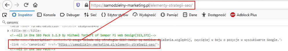 Kanoniczność strony dla adresu URL 2